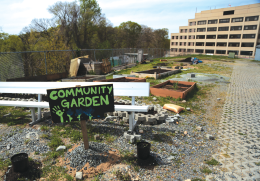 Garden Grows Community