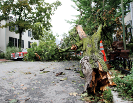 DC Spared Worst of Hurricane